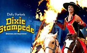 Dixie Stampede - Show